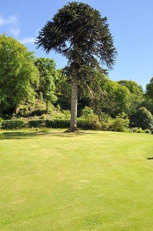 Dunvegan Castle & Gardens: gardens