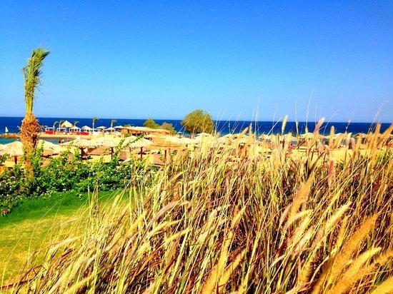 Mercure Hurghada Hotel: la Mer