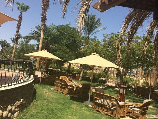 Hilton Sharm El Sheikh Fayrouz Resort : Beautiful Gardens