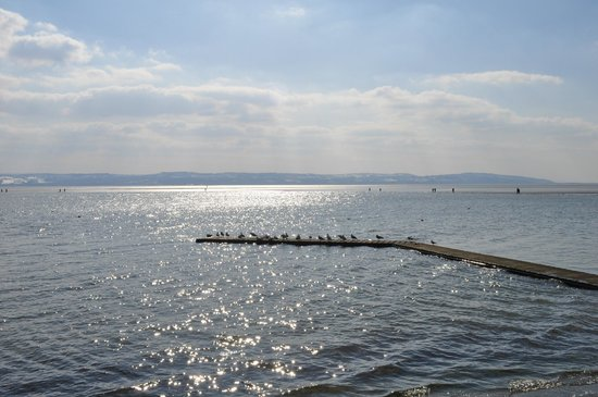 West Kirby Marine Lake: West Kirby delight