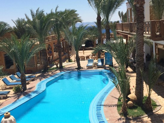 Acacia Dahab Hotel: View of Pool and Gardens