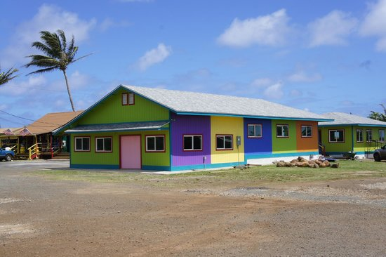 Oahu Spot Tours: Shop