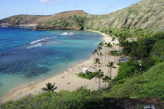 Oahu Spot Tours: Hanauma Bay