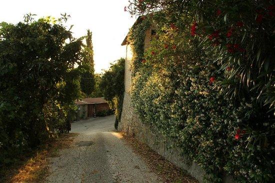 Apartments Barabani Stefano: entrance- ingresso