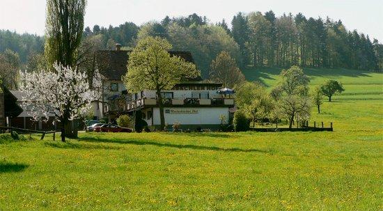 Gasthaus-Pension Reichenbächler Hof: Reichenbächler Hof