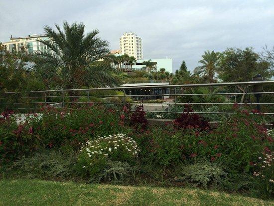 Pestana Grand Premium Ocean Resort: general view