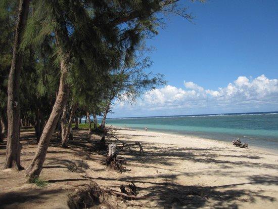 Residence Tropic Appart'hotel : La plage juste à côté... plutôt sympa non?!