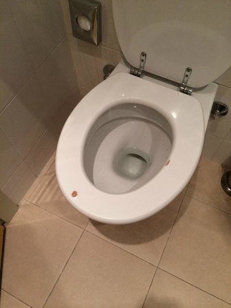 Idea Hotel Milano San Siro: tavoletta wc