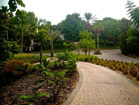 JA Palm Tree Court: Walkway