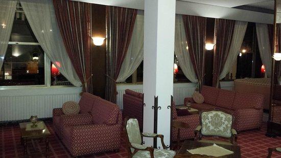 Hotel Grand Torino: salotti hotel