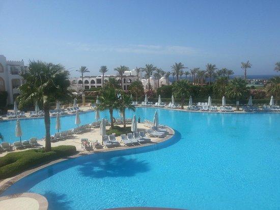 Tiran Island Hotel: Бассейн