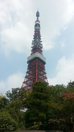 Tokyo Tower : 風景