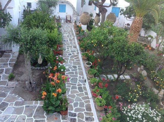 Philippi Hotel: Jardin
