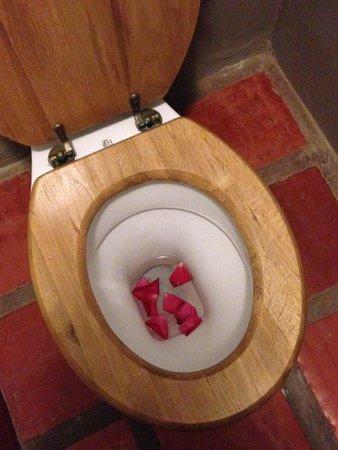 Mooiplaas Guesthouse : Rose petals in the loo!