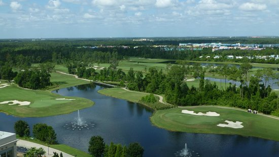 Hilton Orlando Bonnet Creek: View from the 17th floor