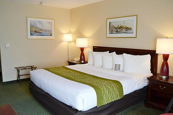 Comfort Inn Cape Cod: King-bedded guestroom