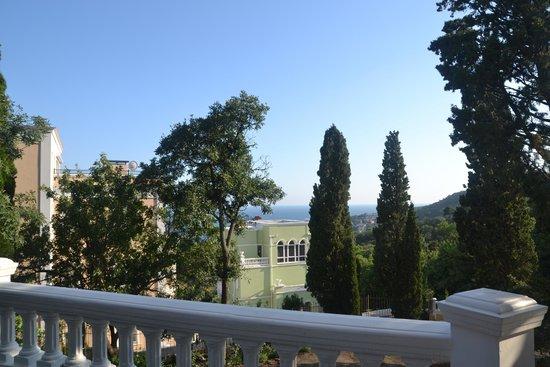 Villa Goluboy Zaliv : вид с террасы