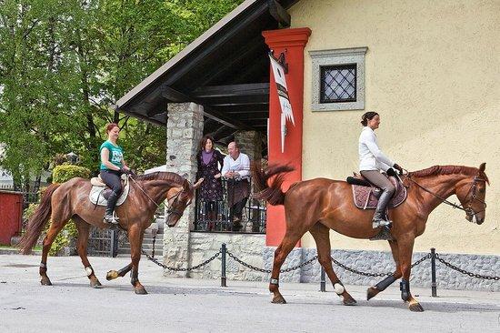 Vila Podvin: Horseback riding