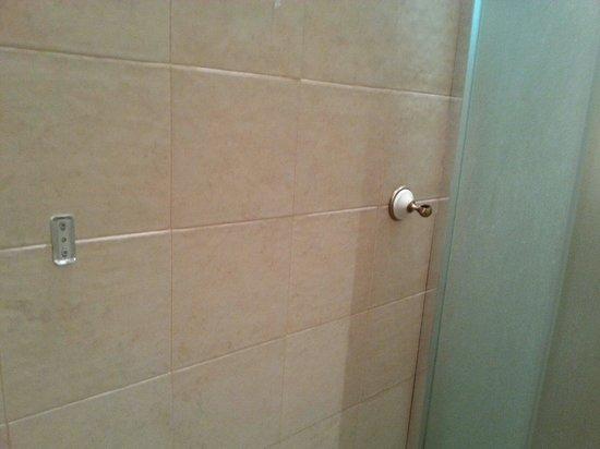 New Imperial Hotel: Bathroom - missing towel rack