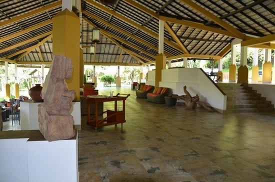 Amaya Lake : Reception