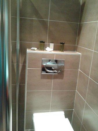 Grand Hotel Francais : gorro de ducha, jabones