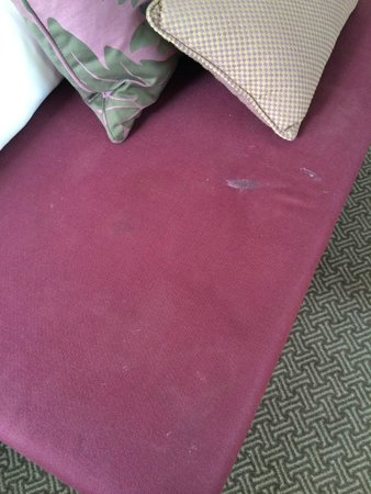 St. Ives Harbour Hotel & Spa: The dirty couch