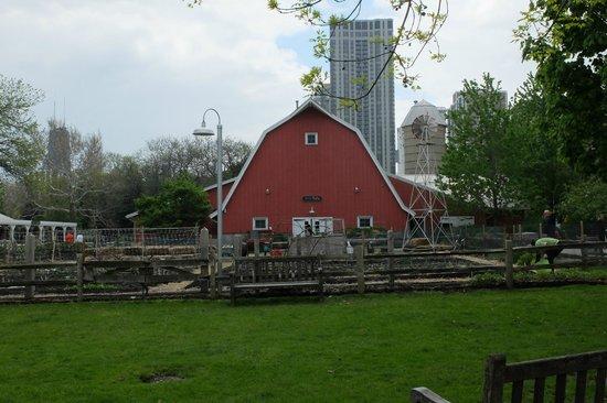 Lincoln Park Zoo : Farm: Barn
