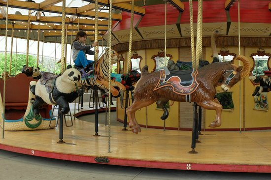 Lincoln Park Zoo : Caroussell in the Zoo