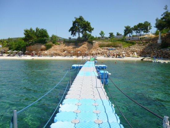 Alexandra Beach Thassos Spa Resort: Beach