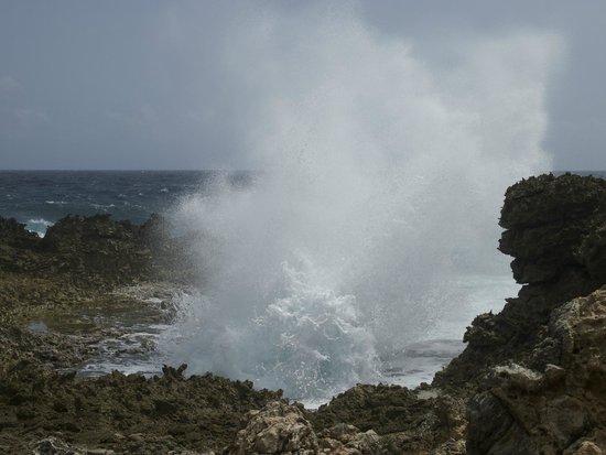 Shete Boka National Park : Incoming wave at Shete Boca