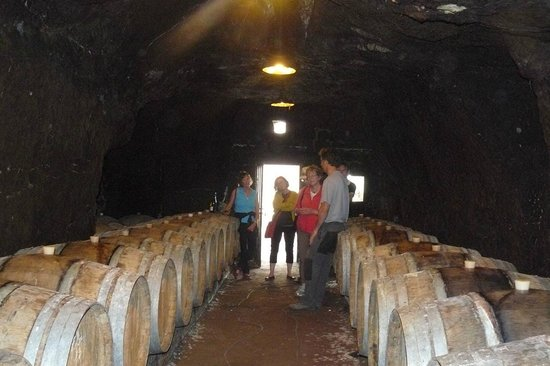 Le Tasting Room Wine - Day Tours : In the troglodyte caves of Mathieu Vallée of Chateau Yvonne in Parnay, Saumur Champigny