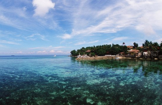 Turtle Bay Dive Resort : Turtle Bay House Reef