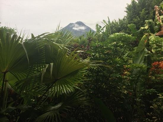 Nayara Resort Spa & Gardens: perfect view of the volcano from our porch on our last morning at Nayara