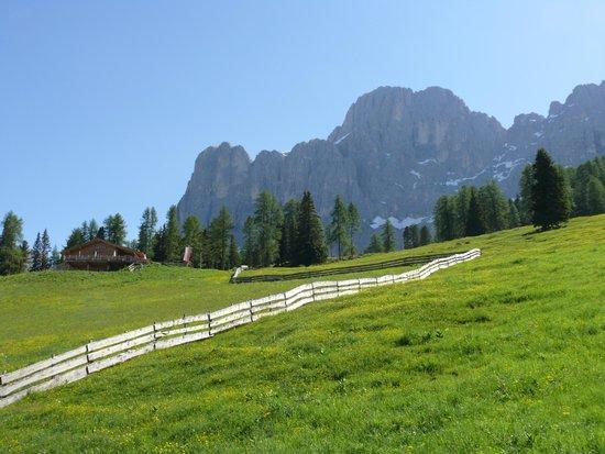 Hotel Pardeller: Spektakuläre Landschaft