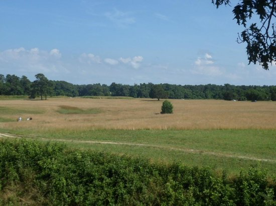 Yorktown Battlefield : Redoubt #9 in the background where the white flag is