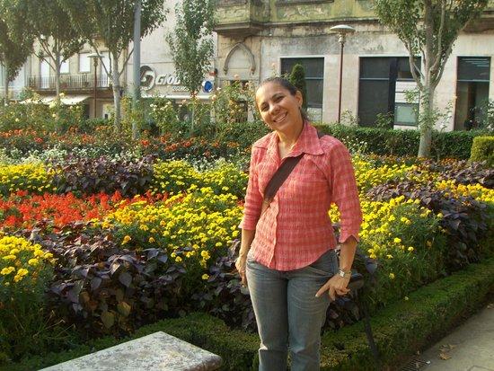 The Garden of Santa Barbara: Primavera no Jardim de Santa Barbara