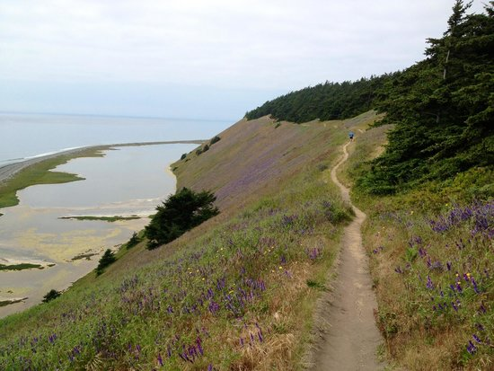 Ebey's Landing National Historical Reserve: Wonderful day hike