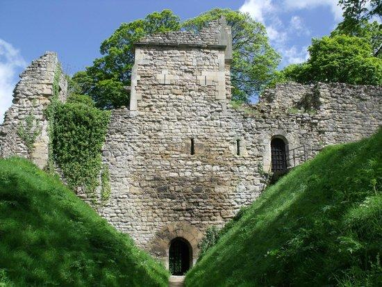 Pickering Castle.