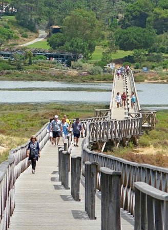 Vilar do Golf: The wooden structured walkway to the beach
