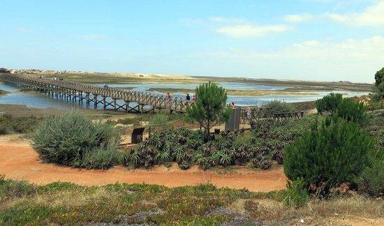 Vilar do Golf : View towards the beach