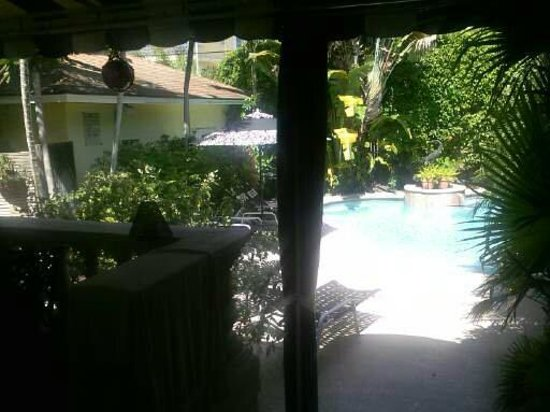 Mango Inn Bed and Breakfast: from porch to pool