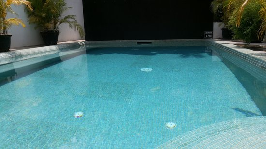 Claremont Angkor Boutique Hotel : Nice pool