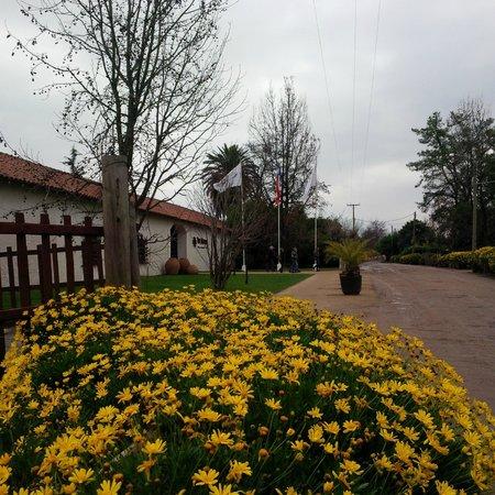 Turiscar - Day Tours