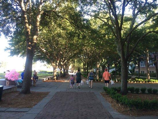 Charleston Waterfront Park : parque