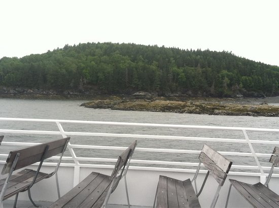 Acadian Nature Cruises: Top deck
