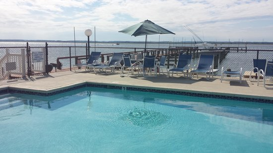 Waterside Inn : Pool is right by the bay.