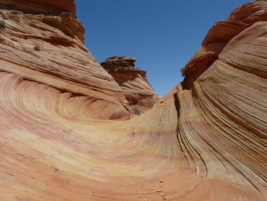 Dreamland Safari Tours : South Coyote Buttes