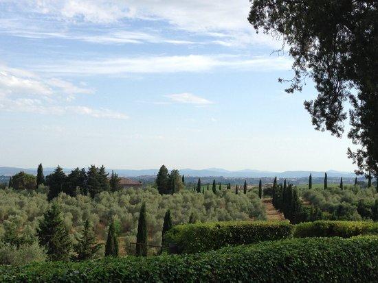 Borgo Scopeto Relais: Vue campagne