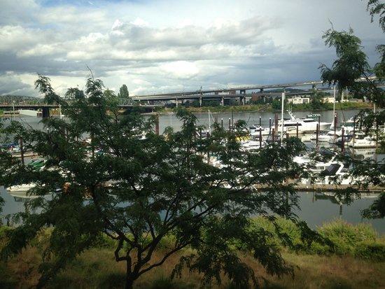 Kimpton RiverPlace Hotel: Marina view