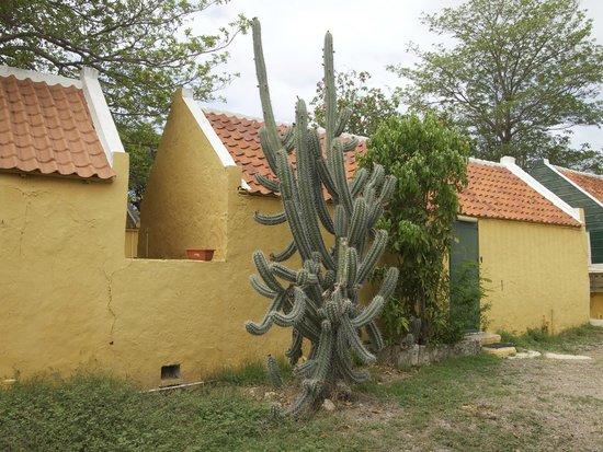 Savonet Museum : Outbuildings at Savonet